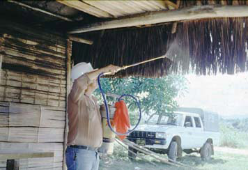 House spraying with insecticides for sandflies and mosquitoes