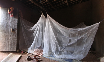 A study bed net in a living space in Burkina Faso. Credit: Durham University/Steve Lindsay