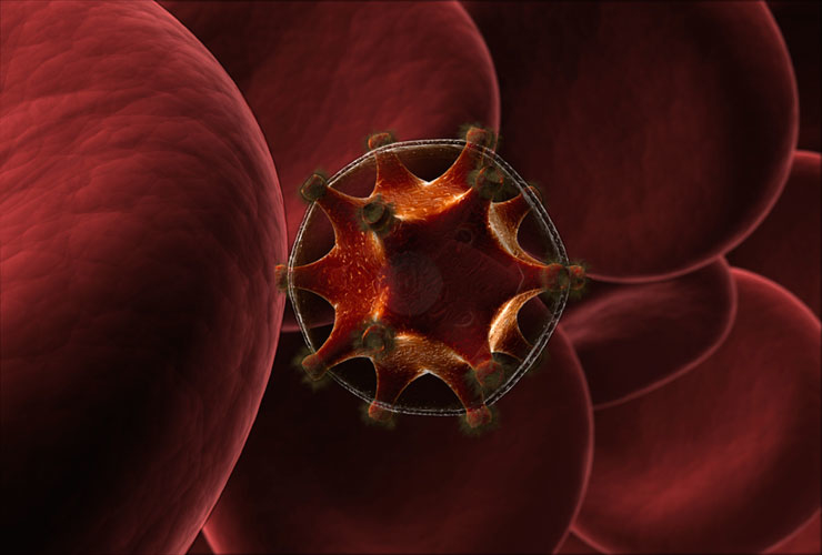 The HIV virus